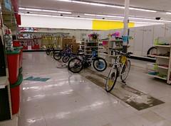 Rag-tag brigade of remaining bikes