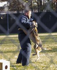 Maloney Canine Training Facility Groundbreaking Ceremony