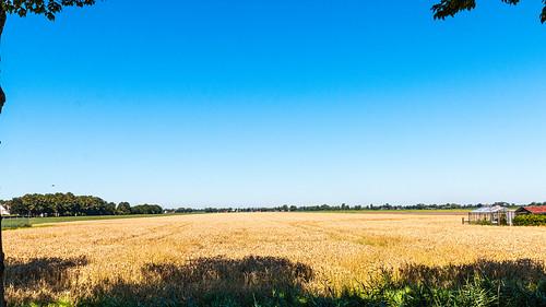 Midden-Beemster - Noord-Holland.