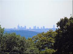 Blick auf die Skyline von Frankfurt/Main