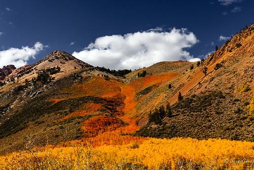 fall colors of North Lake hills