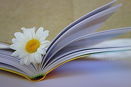 flower in my book
