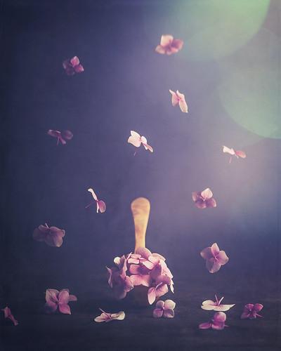 Spoon of flowers