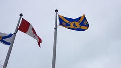 """Halifax """"Kingfisher"""" Flag"""
