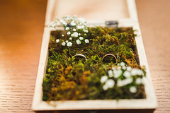 Wedding Rings In The Moss And Wooden Box