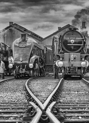 """Lead-in lines. Pointwork leads to the majestic shapes of """"Sir Nigel Gresley"""" and """"Tornado"""" as they receive attention on shed."""