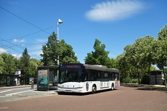 Solaris Urbino n°623  -  Strasbourg, CTS