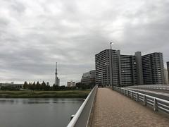 Minamisenju 8-chome in Arakawa-ku