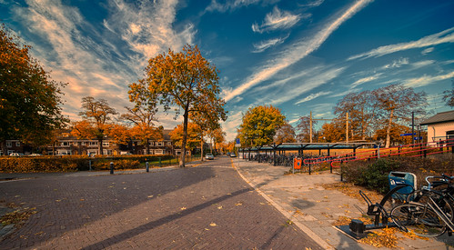 Van Miertstraat, Vught.