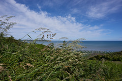 Grasses and clouds - Photo of Langueux