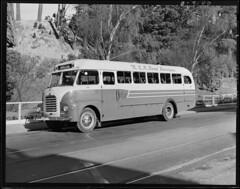NZ Rail Road Services Bus near Botanic Gardens, Wellington (1952)
