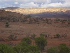 Flinders Ranges South Australia. Near Hawker.