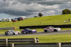 Ginetta GT5 and G40 Oulton Park