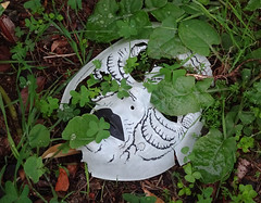 Mask in Weeds