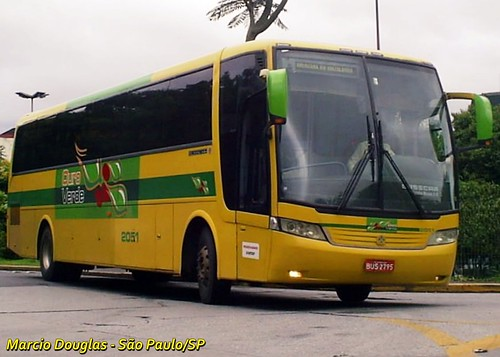 Ouro Verde 2051