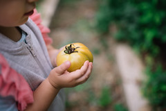 Girl holding unripe tomato