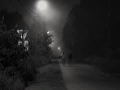 Night. Fog