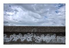 a sea of graffiti