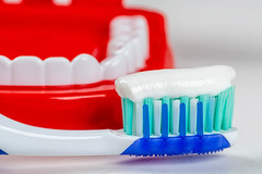Toothbrush with toothpaste on the background of tooths model