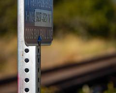 Railroad in the Wetlands