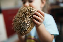 Toddler holding rye bread