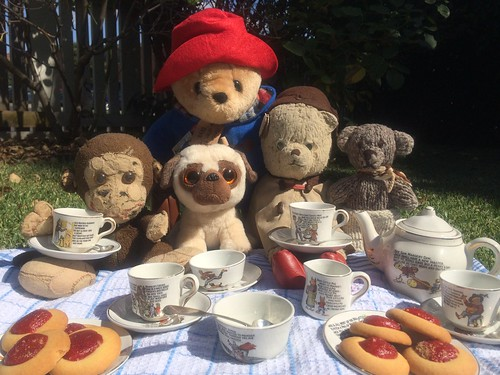 Paddington and Scout Enjoy a Teddy Bear's Picnic on the Lawn