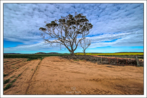 Farmland, Mount Stirling Road, South Tammin, Western Australia
