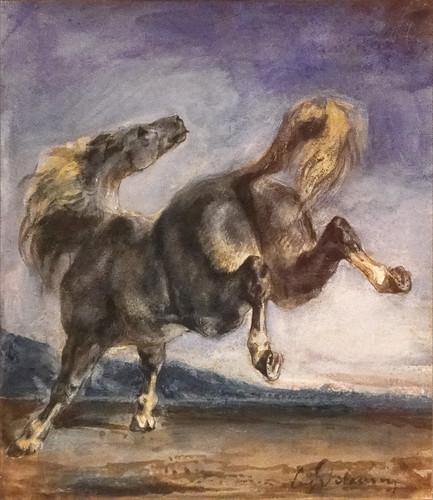 Cheval ruant d'E. Delacroix (Petit Palais, Paris)
