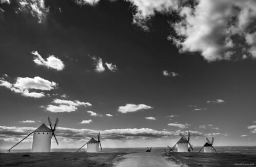 Windmills under the sky