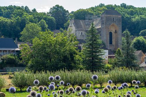 St-Amand-du-Coly, Dordogne, France