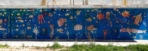 Aquarium de plein air
