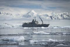 Antarctica: Ars Electronica Garden