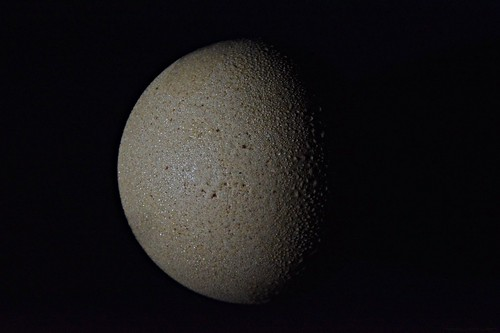 Dark Side of the Egg #3  (Explore 14.08.2020)