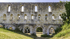 Ruines de l'Abbaye de Mortemer. (7)