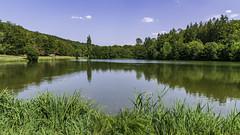L'étang de l'Abbaye de Mortemer. (2)