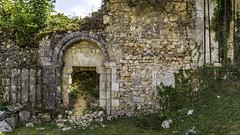 ruines de l'Abbaye de Mortemer. (6)