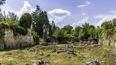 ruines de l'Abbaye de Mortemer. (3)