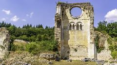ruines de l'Abbaye de Mortemer. (2)