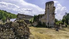 Ruines de l'Abbaye de Mortemer. (5)