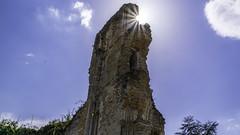 ruines de l'Abbaye de Mortemer. (4)