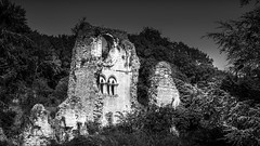 Ruines de l'Abbaye de Mortemer. (1)