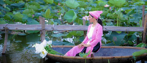 Lady in the Lotus pond