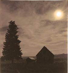Old Farm Shadowes