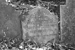 Leavesden Asylum/Hospital Burial Ground