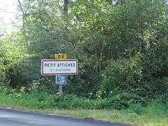 Petit Attiches, Forêt de Phalempin