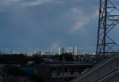 Rainbow over Tokyo Tower