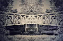 Bridge Transformations 2020