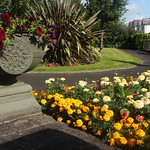 Gorsedd Park, Lampeter