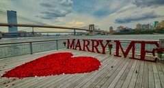 NYC - Aug 15 2020