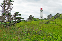 Louisbourg-08901 - Lighthouse Trail